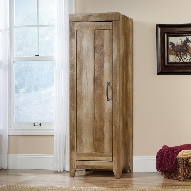 Alluring Adept Storage Wide Storage Cabinet 418141 Sauder Sauder Storage Cabinet With Drawer