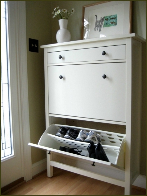 Fantastic Fashionable Rectangle Wood Shoe Cabinet With Doors Pretty Natural Shoe Storage Cabinet With Doors