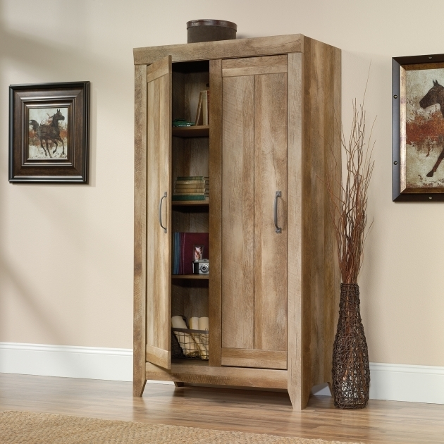 Fantastic Sauder Storage Cabinets Best Home Furniture Ideas Sauder Storage Cabinet With Drawer