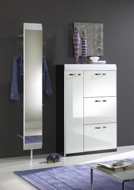 Stylish Shoe Storage Cabinet With Doors Furniture Wardrobe Cabinet Shoe Storage Cabinet With Doors