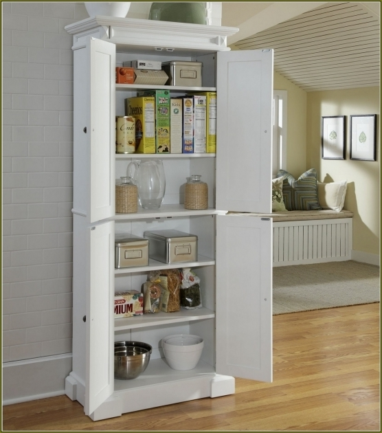 Image of Furniture Delightful Home Depot Storage Cabinets With Casual Storage Cabinets At Home Depot
