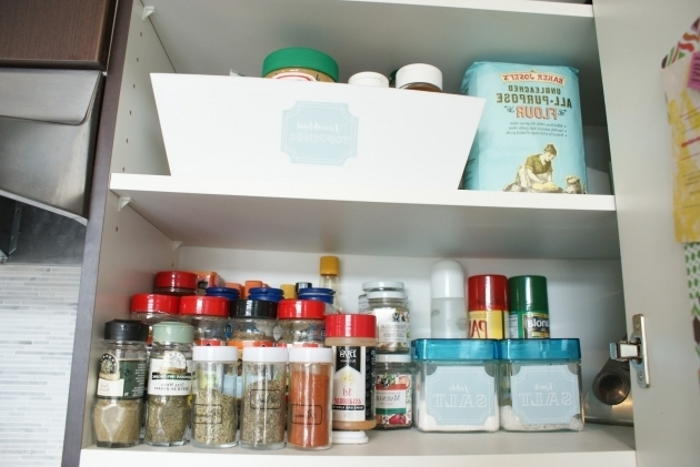 Inspiring The Social Home Dollar Store Spice Cupboard Family Dollar Storage Bins