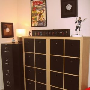 Comic Book Storage Cabinets