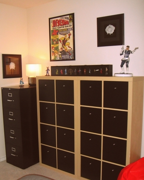 Gorgeous Comic Collection Storage Dream Home Ideas Pinterest Us Comic Book Storage Cabinets