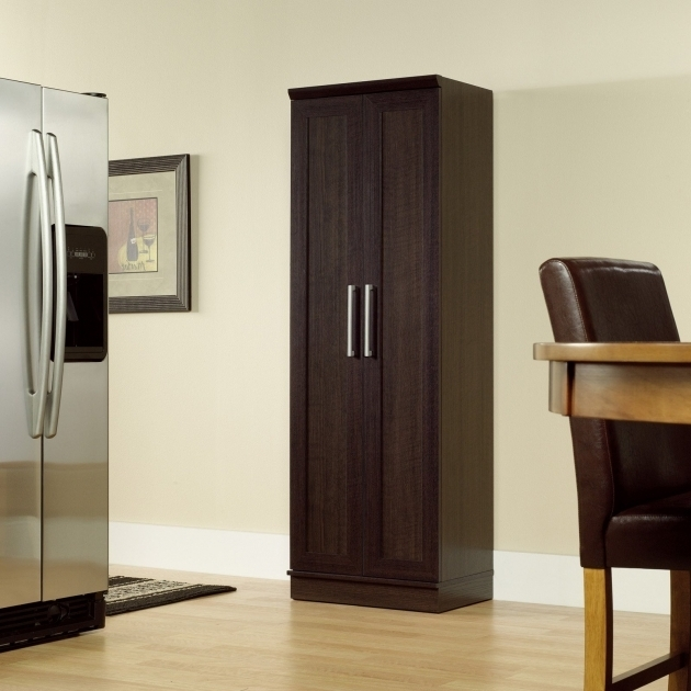 Image of Sauder Homeplus Base Cabinet Dakota Oak Pantry Cabinets At Sauder Homeplus Wardrobe Storage Cabinet