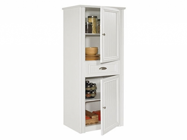 Incredible Ameriwood Storage Cabinet Big Lots Creative Cabinets Decoration Big Lots Storage Cabinets