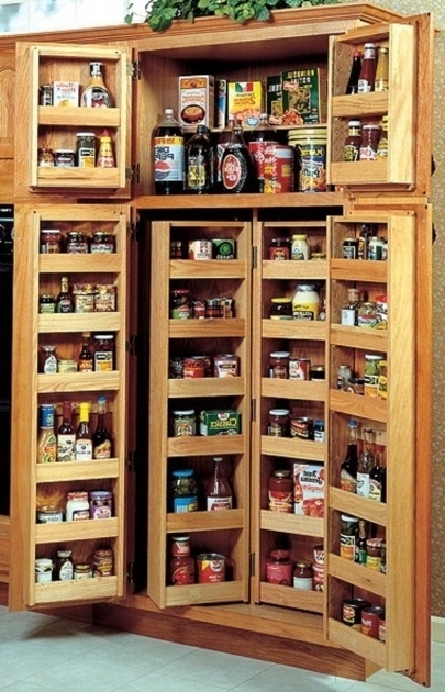 Remarkable Functional Kitchen Cabinet Storage Ideas To Make Tidy Appearance Food Storage Cabinet With Doors