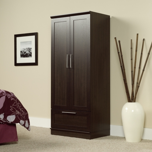 Remarkable Sauder 411312 Homeplus Dakota Oak Wardrobe Storage Cabinet Sauder Homeplus Wardrobe Storage Cabinet