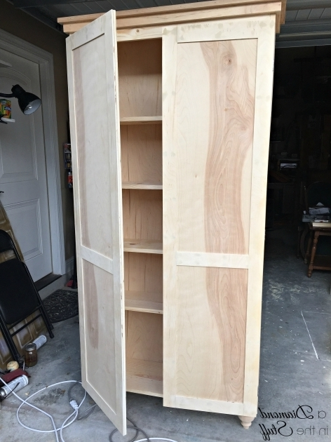 Stylish How To Build A Storage Cabinet With Doors Creative Cabinets How To Build Storage Cabinets