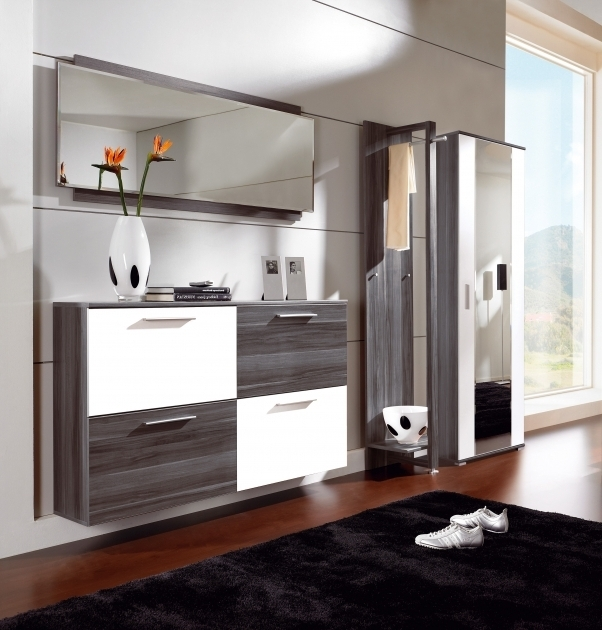Image of Living Room Guidelines On Useful Shoe Cabinets For The Hallway Floating Storage Cabinets