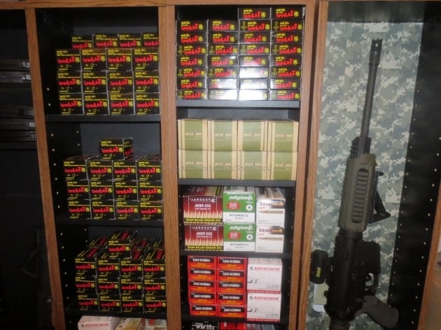 Best Ammo Storage Cabinets Gallery Of Sheds Bench Organizers Picture Gun