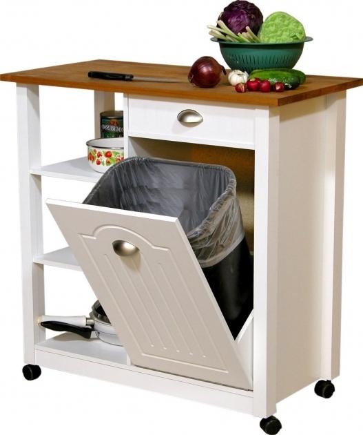 Best Kitchen Trash Can Storage Cabinet Trash Bin Storage Cabinet