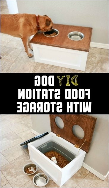 Outstanding The 25 Best Ideas About Dog Food Storage On Pinterest Rustic Dog Food Storage Cabinet