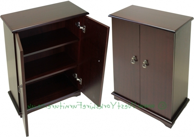 Best Oak Dvd Storage Cabinet With Doors Creative Cabinets Decoration Blu Ray Storage Cabinet