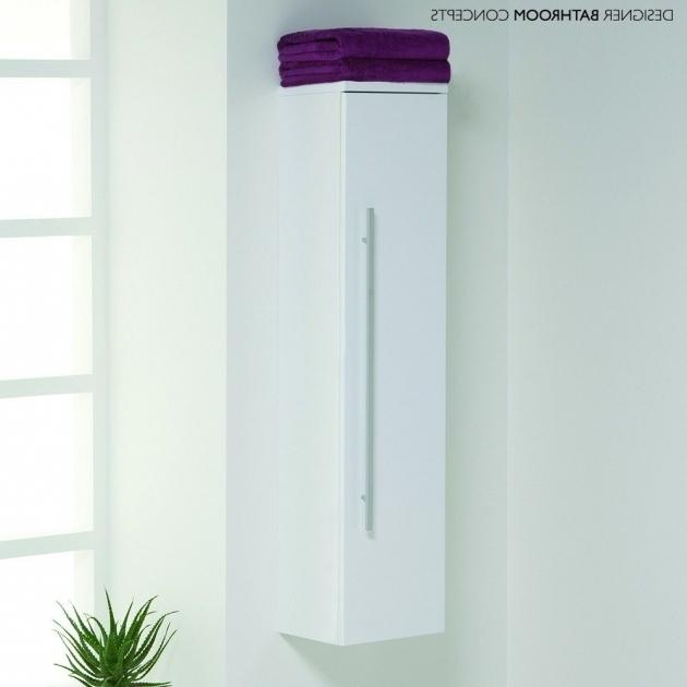 Gorgeous Skinny Bathroom Storage Cabinet Creative Cabinets Decoration Skinny Storage Cabinet