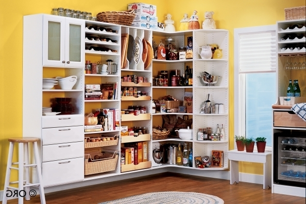 Incredible Kitchen Storage Cabinets With Doors And Shelves Creative Food Storage Cabinet With Doors