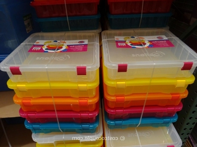 Delightful Marvelous Creative Options Project Boxes Costco Storage Containers