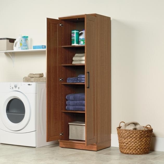 Big Lots Storage Cabinets Storage Designs