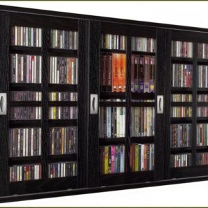 Dvd Storage Cabinet With Doors