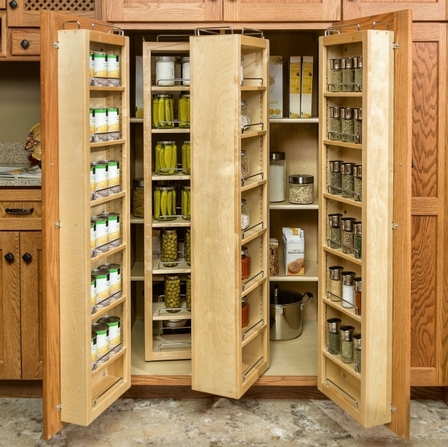 Stylish Kitchen Storage Cabinets With Doors And Shelves Creative Food Storage Cabinet With Doors